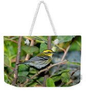 Townsends Warbler In Tree Weekender Tote Bag