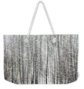C And O Towpath Blizzard Weekender Tote Bag