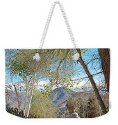 Trailhead Area In Andreas Canyon In Indian Canyons-ca Weekender Tote Bag