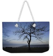 Tranquil Weekender Tote Bag by Terry DeLuco