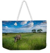 Tranquility On The Plains Weekender Tote Bag