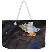Traveling At A Snail's Pace Weekender Tote Bag