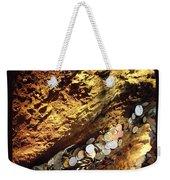 Treasure Bark 4 Weekender Tote Bag