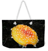 Treasures Of The Forest Two Weekender Tote Bag