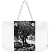 Tree And Cactus Weekender Tote Bag
