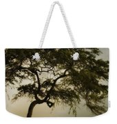 Tree And Stormy Sky Weekender Tote Bag