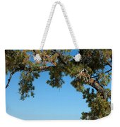 Tree Arch Weekender Tote Bag