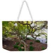 Tree At Norfolk Botanical Garden Weekender Tote Bag