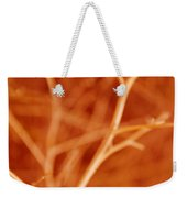 Tree Branches Abstract Orange Weekender Tote Bag