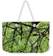 Tree Branches  Weekender Tote Bag