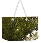 Tree Covered Weekender Tote Bag