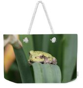 Tree Frog Up Close Weekender Tote Bag