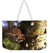 Tree Fungus  Weekender Tote Bag