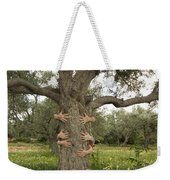 Tree Hugging Green Ecological Concept  Weekender Tote Bag
