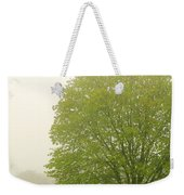 Tree In Fog Weekender Tote Bag by Elena Elisseeva
