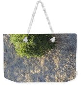 Tree In Grass From Balloon Weekender Tote Bag