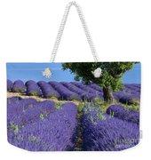 Tree In Lavender Weekender Tote Bag