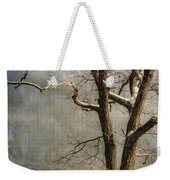 Tree In Winter Weekender Tote Bag by Lois Bryan