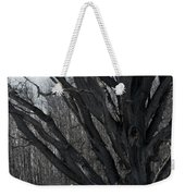 Tree In Winter Weekender Tote Bag