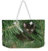 Tree Kitten Weekender Tote Bag