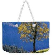 Tree Of Seasons Weekender Tote Bag