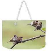 Tree Sparrows Weekender Tote Bag