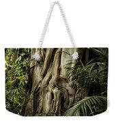 Tree Trunk And Ferns Weekender Tote Bag