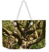 Tree Trunk And Limbs Weekender Tote Bag