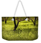 Tree Trunks In A Peach Orchard Weekender Tote Bag