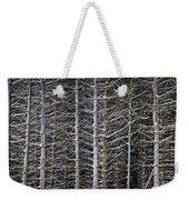 Tree Trunks In Winter Weekender Tote Bag by Elena Elisseeva