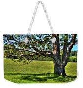 Tree With A Swing Weekender Tote Bag