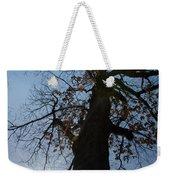 Tree With Sun Weekender Tote Bag