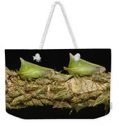 Treehoppers And Nymphs Mindo Ecuador Weekender Tote Bag