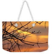 Trees Ablaze In Autumn Weekender Tote Bag