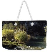Trees And Plants At The Lakeside Weekender Tote Bag