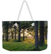 Trees At Sunrise Weekender Tote Bag