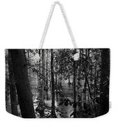 Trees Bw Weekender Tote Bag by Nelson Watkins