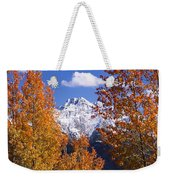 Trees In Autumn, Colorado, Usa Weekender Tote Bag