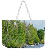 Trees On A Lakeshore Weekender Tote Bag