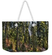Trees With Moss In The Forest Weekender Tote Bag