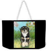 Tri Colored Dachsund Mix Dog Canine Pets Animal Art Weekender Tote Bag