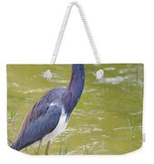 Tri Colored In Lake Weekender Tote Bag