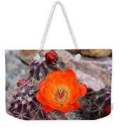 Trichocereus Cactus Flower  Weekender Tote Bag
