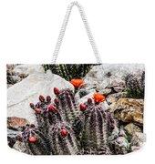 Trichocereus Cactus Flowers Weekender Tote Bag