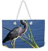 Tricolored Heron At The Pond Weekender Tote Bag