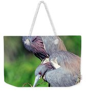 Tricolored Heron Male And Female At Nest Weekender Tote Bag
