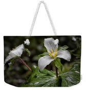 Trillium - After The Rain Weekender Tote Bag