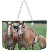 Trio Of Horses 2 Weekender Tote Bag