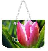 Triumph Tulip Weekender Tote Bag
