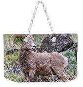 Wild Bighorn Weekender Tote Bag
